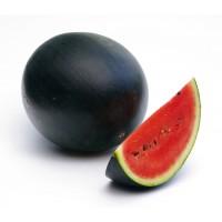 بذور البطيخ sugar babay