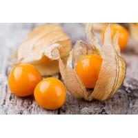 بذور طماطم توماتيلو العضوية Tomatillo