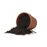 بوتينج سويل تربة زراعية  10لتر Potting Soil